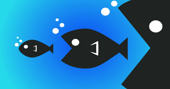 Homegauge news alert may 2018 for Big fish in a small pond game
