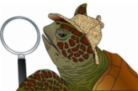 Terrapin Inspection LLC Logo