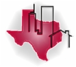 Texas Precision Real Estate Inspection Logo